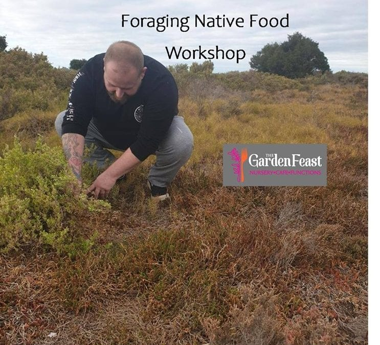 Foraging Native Food Workshop