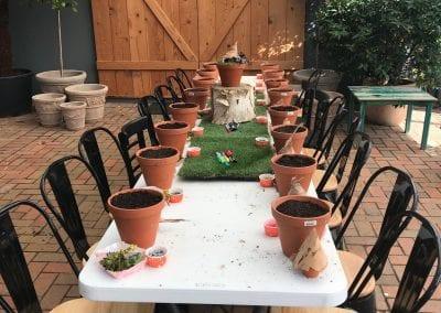 Garden Feast Cafe 3